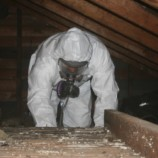 Why You Should Never Remove Asbestos on Your Own