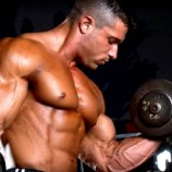 Increase the growth of the muscles by using the best body building steroids